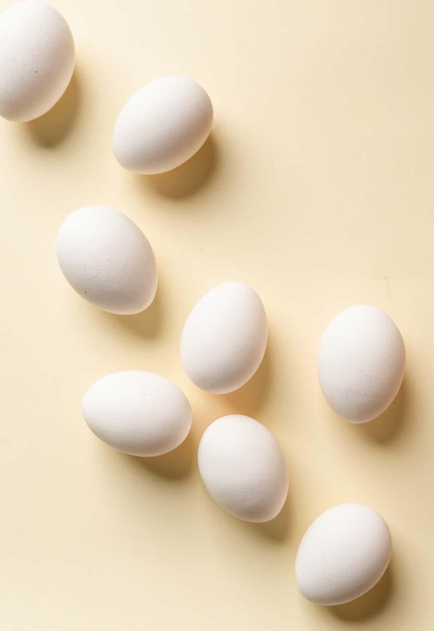 eggs-camillaskov
